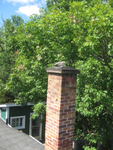 Tree branches over chimney require removal.