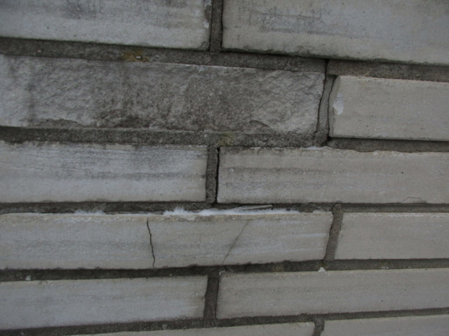 Have brick repaired and ensure cap is not allowing water to penetrate.